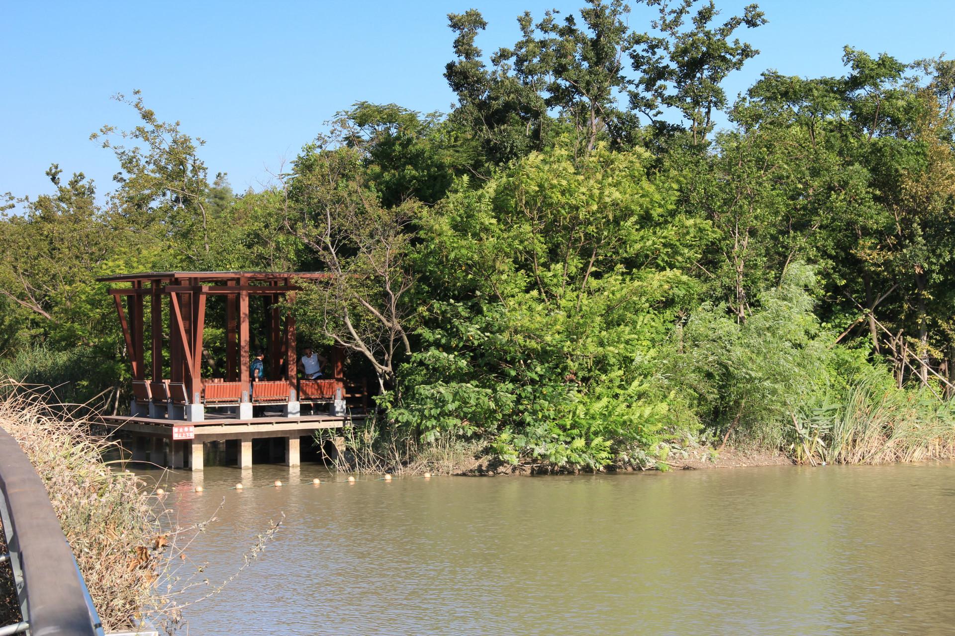 吴淞炮台湾湿地森林公园