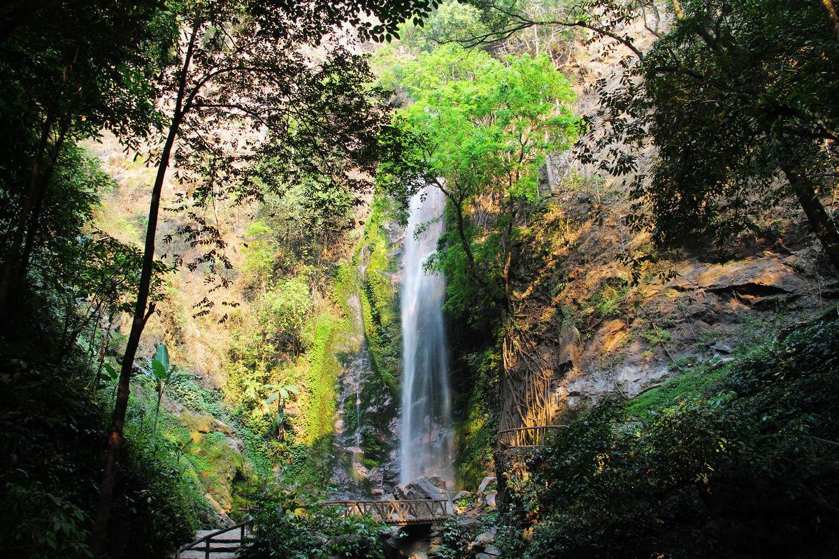 扎朵热带雨林风景区